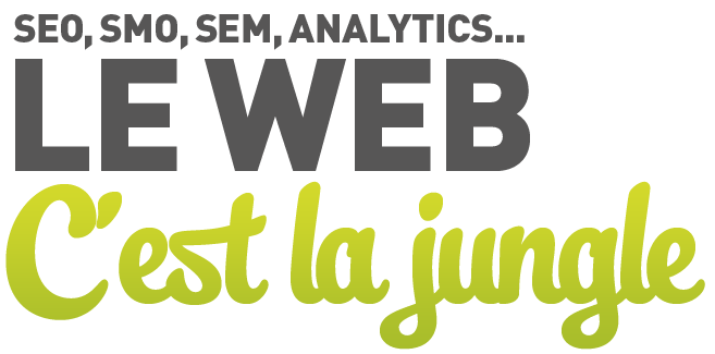 SEO, SMO, SEM, Analytics... le web c'est la jungle