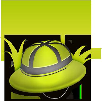 chapeau et palmier Lemon