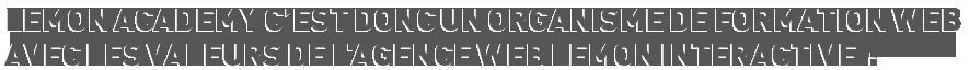 Lemon Academy c'est donc un organisme de formation web avec les valeurs de l'agence web Lemon Interactive :